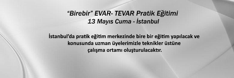 Birebir EVAR- TEVAR Pratik Eğitimi İstanbul