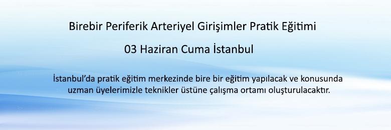Birebir Periferik Arteriyel Girişimler Pratik Eğitimi İstanbul