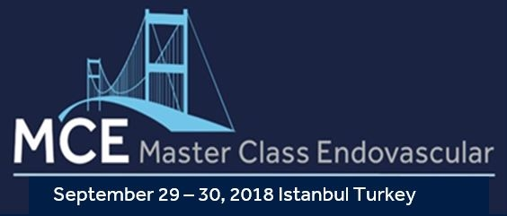 Master Class Endovascular