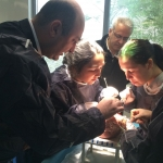 AF Tedavisinde Cerrahi Kriyoablasyon Terapisi ve Mitral Kapak Tamir Atölyesi- İstanbul